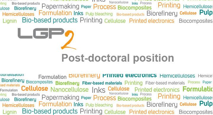 LGP2 post-doctorate proposal(s)